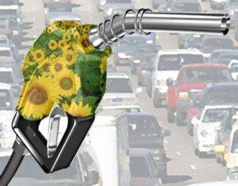 Biocombustibles: la energía del futuro